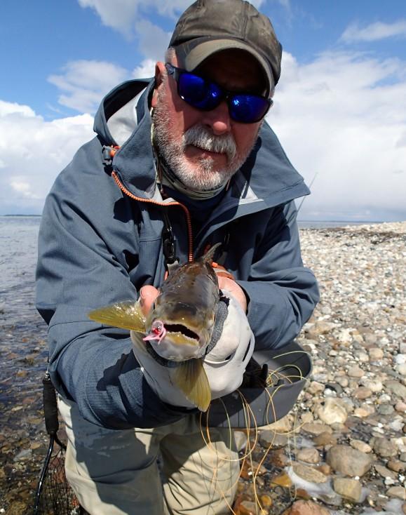 Sepp sea trout